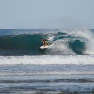 Catch a Wave!